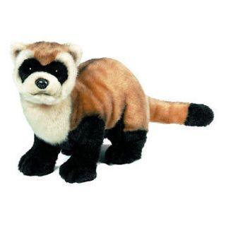 Webkinz Virtual Pet Plush   Signature Series   BLACK FOOTED FERRET