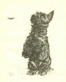 Scottish Terrier Vintage Dog Print 1940 Diana Thorne