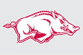 arkansas razorbacks helmet hog 2 right vinyl decal 4 car truck sticker