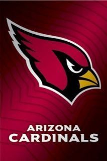 Arizona Cardinals Poster Waves Logo 22x34 NFL National Football League