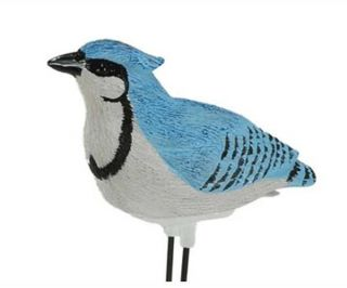 Singing Blue Jay Bird Potted Plant PAL Indoor Outdoor Water Sensor