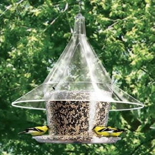 Arundale Mandarin Sky Cafe Squirrel Proof Bird Feeder