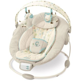 Bright Starts Comfort Harmony Bouncer Used