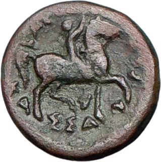 Cassander 319BC Macedonian King Hercules Horse Authentic Ancient Greek
