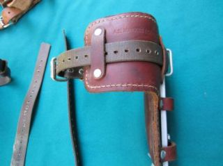 Burgess Buckingham Pole Tree Climbing Spurs Gaffs Spikes Safety Belt