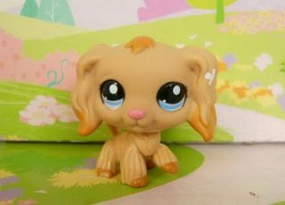 Littlest Pet Shop 1200 Tan Cocker Spaniel Dog 1716