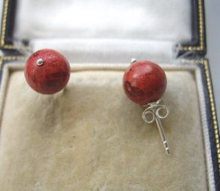 traditional genuine red coral silver stud earrings