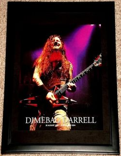 Dimebag Darrell Pantera Washburn Confederate Guitar Framed Tribute