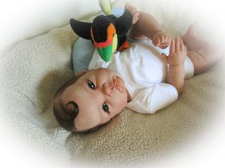 Reborn Baby Doll Sweet Baby Boy Harvey So Realistic with Human Hair