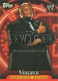 2006 WWE Diva Subset of 11 Cards Topps Insider Series