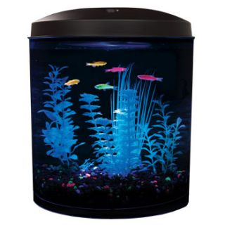 3.5 Gallon LED Aquarium Kit