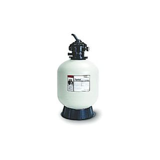 Pentair 145241 Tagelus Top Mount Sand Filter with MultiPort Valve 60 GPM, 3.1 Sq. Ft.