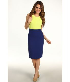 BCBGMAXAZRIA Blaire Colorblock Sheath Dress Womens Dress (Yellow)
