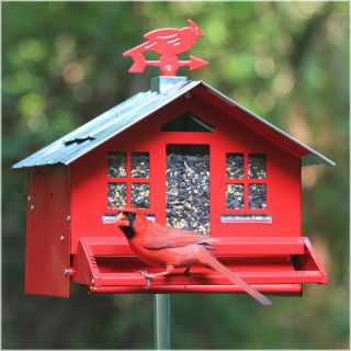 Perky Pet Squirrel Be Gone Country Style Bird Feeder Multicolor   338